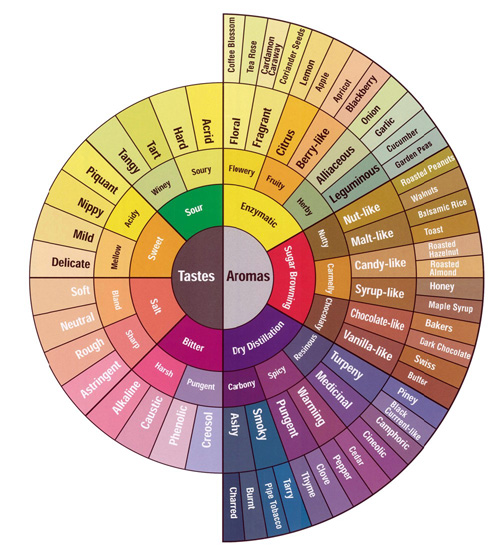Coffee_tasting_flavor_wheel