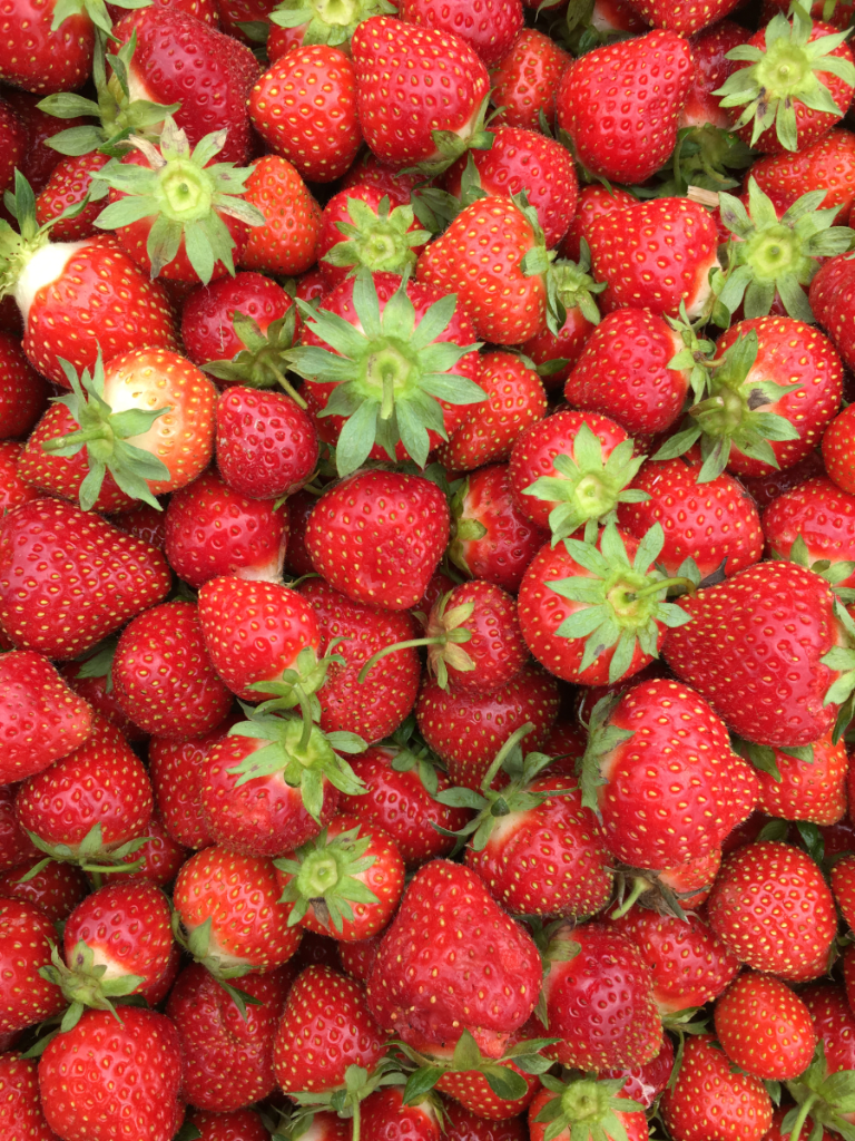 strawberryfieldsforsomething